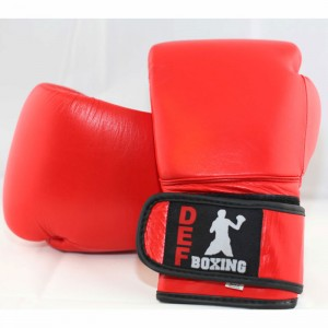 DEF Boxing Gloves (Red)