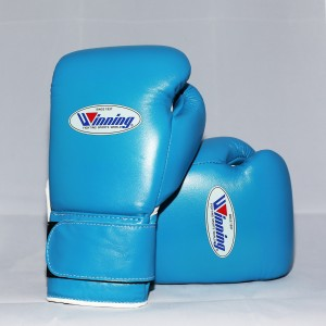 Winning Boxing Gloves Special Edition (Velcro/Sky ...